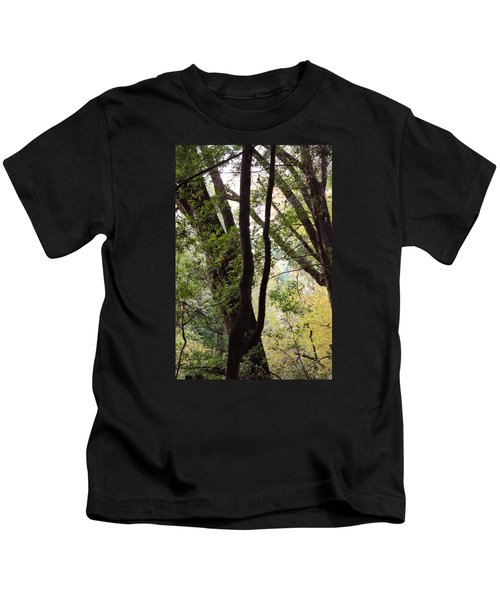 Through The Trees Kids T-Shirt