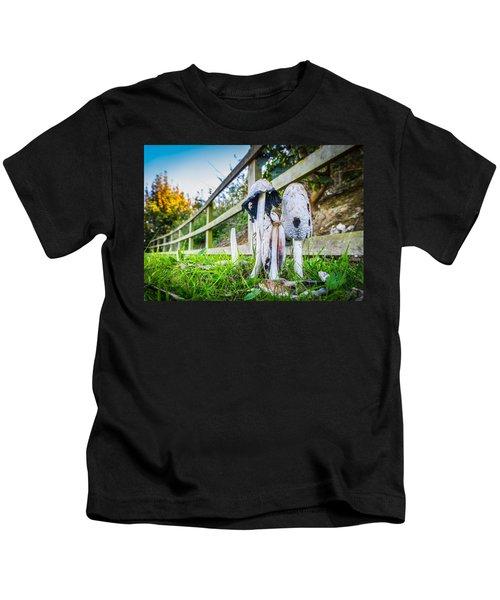 Toadstools. Kids T-Shirt