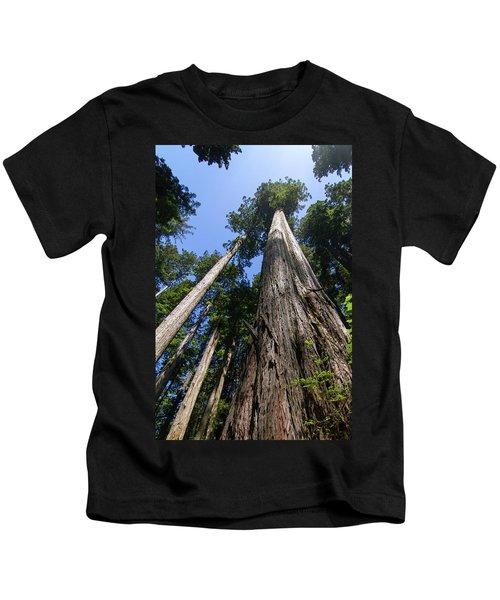 Towering Redwoods Kids T-Shirt