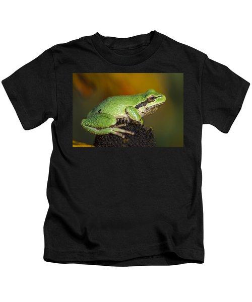 Treefrog On Rudbeckia Kids T-Shirt
