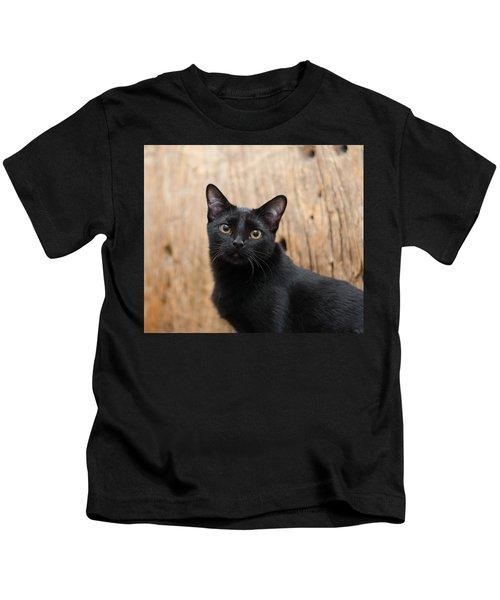 Velvet 2 Kids T-Shirt