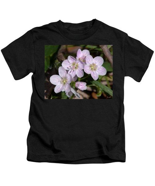 Virginia Or Narrowleaf Spring-beauty Dspf041 Kids T-Shirt