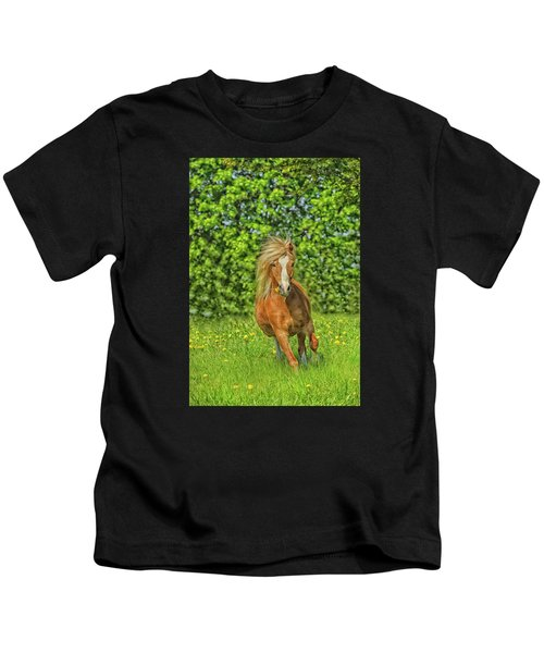 Welsh Pony Kids T-Shirt