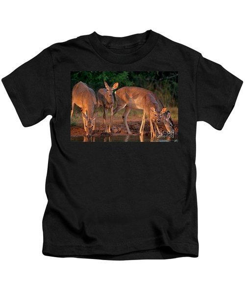 Whitetail Deer At Waterhole Texas Kids T-Shirt