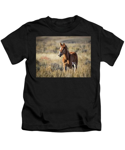 Wild Colt In Sand Wash Basin - Northwest Colorado Kids T-Shirt