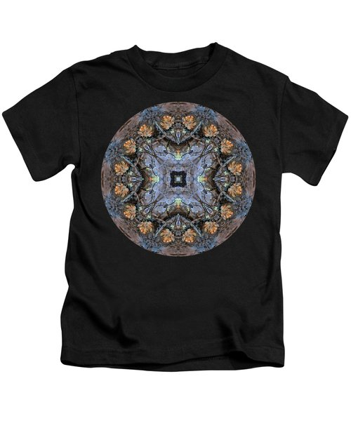 Winged Creatures In A Star Kaleidoscope #2 Kids T-Shirt