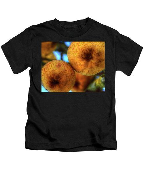 Winter Apples 2 Kids T-Shirt