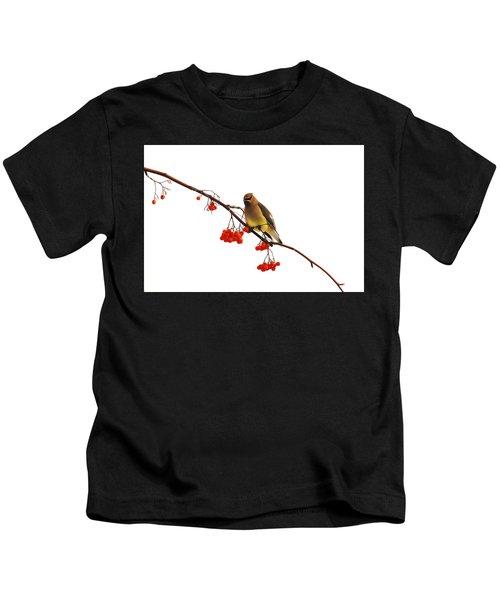 Winter Birds - Waxwing  Kids T-Shirt