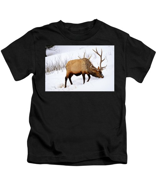 Winter Bull Kids T-Shirt
