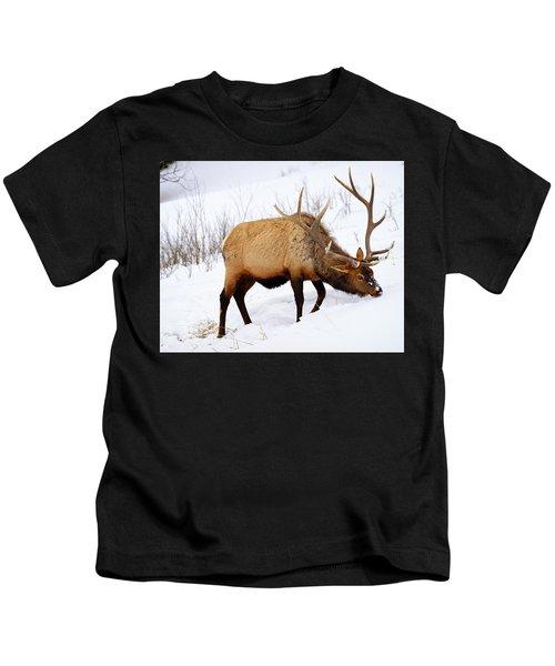 Winter Bull Kids T-Shirt