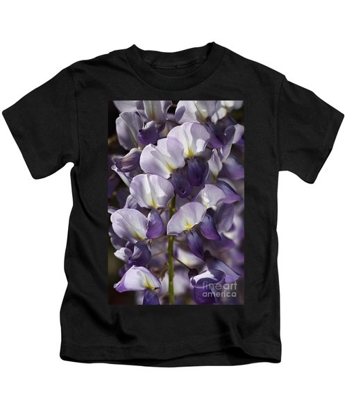 Wisteria In Spring Kids T-Shirt