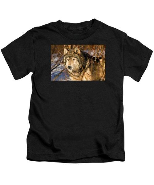 Wolf In Brush Kids T-Shirt