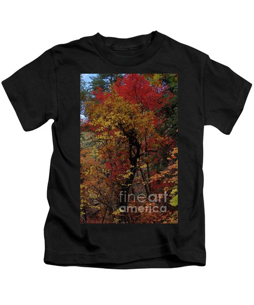 Woods In Oak Creek Canyon, Arizona Kids T-Shirt