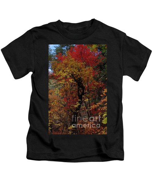 Woods In Oak Creek Canyon, Arizona Kids T-Shirt