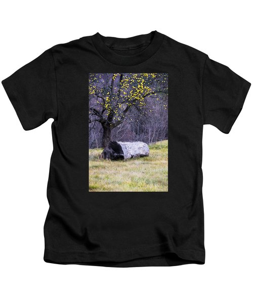 Yellow Apples Kids T-Shirt