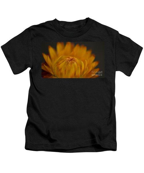 Yellow Strawflower Blossom Close-up Kids T-Shirt