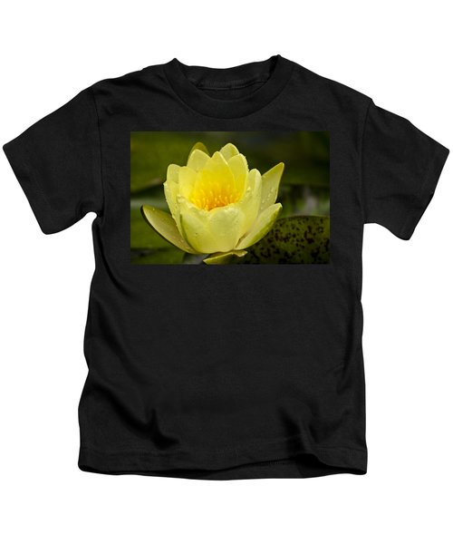 Yellow Water Lilly Kids T-Shirt