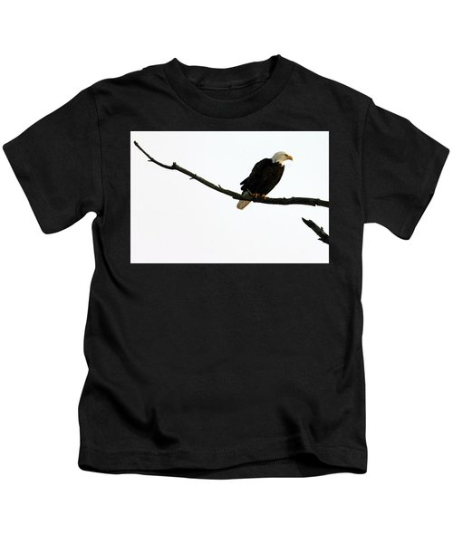Bald Eagle 120501 Kids T-Shirt