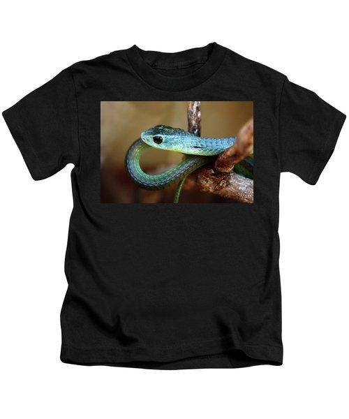 Boomslang Kids T-Shirt