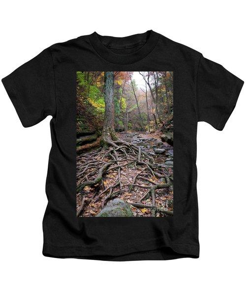 1508 Upper Dell Matthiessen State Park Kids T-Shirt