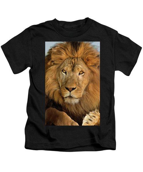 656250006 African Lion Panthera Leo Wildlife Rescue Kids T-Shirt