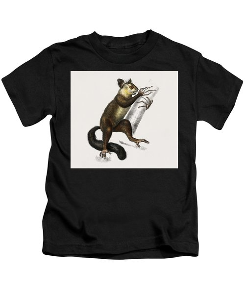 Aye-aye  Cheiromys Madagascariensis  Illustrated By Charles Dessalines D' Orbigny  1806-1876  Kids T-Shirt
