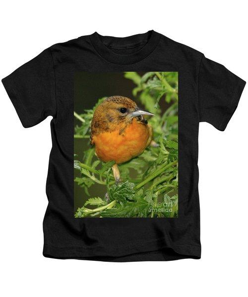 Baltimore Oriole Kids T-Shirt