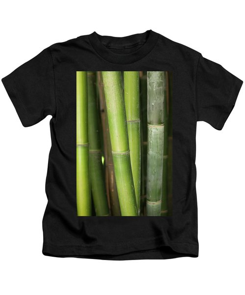 Bamboo Stalk 4057 Kids T-Shirt