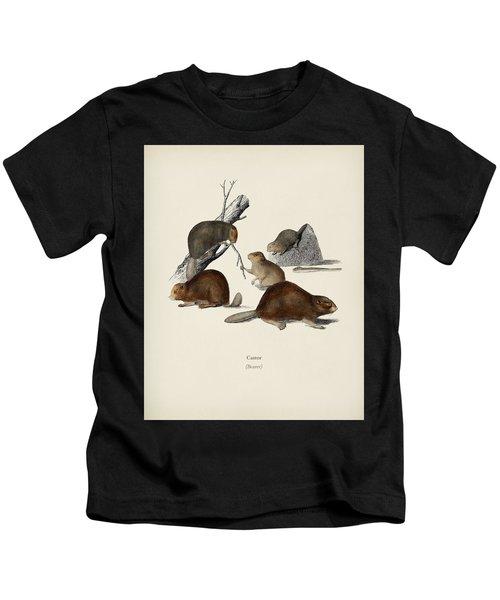 Beaver  Castor  Illustrated By Charles Dessalines D' Orbigny  1806-1876  Kids T-Shirt
