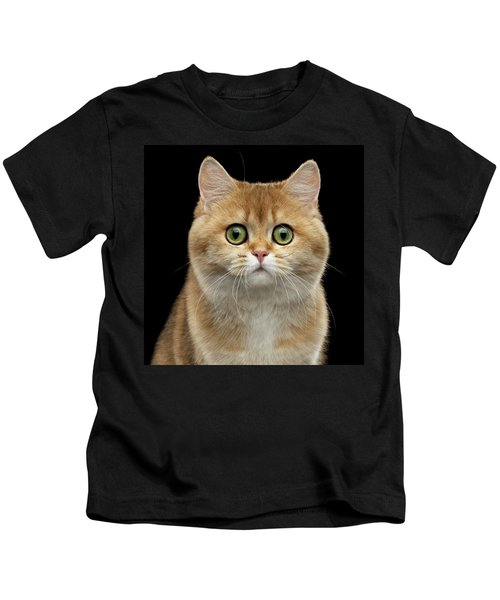 Close-up Portrait Of Golden British Cat With Green Eyes Kids T-Shirt