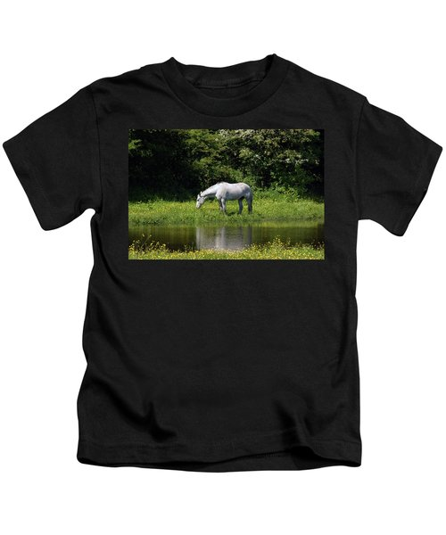 Cumbria. Ulverston. Horse By The Canal Kids T-Shirt