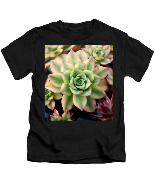 Cute Succulent Kids T-Shirt