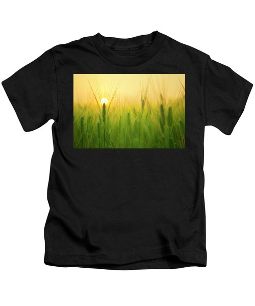 Dawn At The Wheat Field Kids T-Shirt