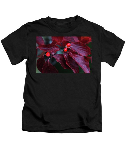 Dogwood Leaves In The Fall Kids T-Shirt