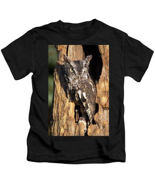 Eastern Screech Owl 92515 Kids T-Shirt