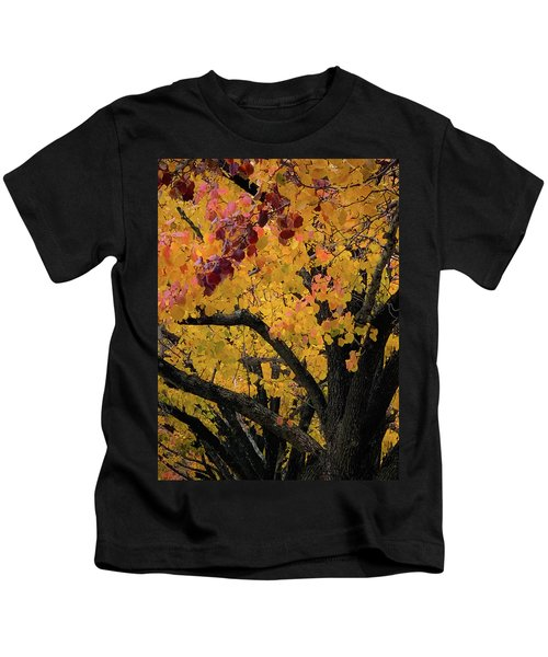 Fall In Carlyle Kids T-Shirt
