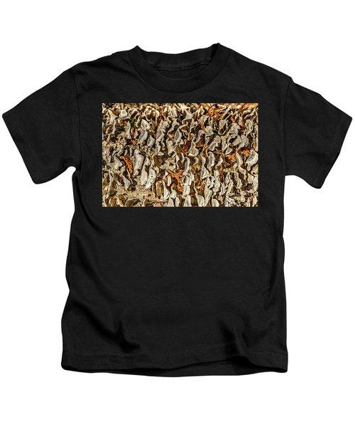 Turkey Tailed Bracket Fungi Kids T-Shirt