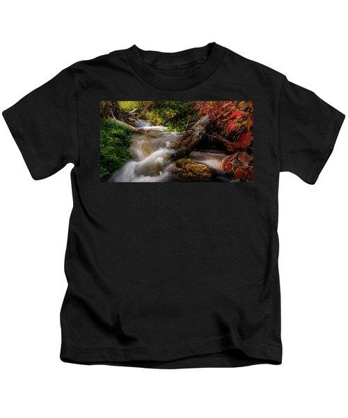 Little Deer Creek Autumn Kids T-Shirt