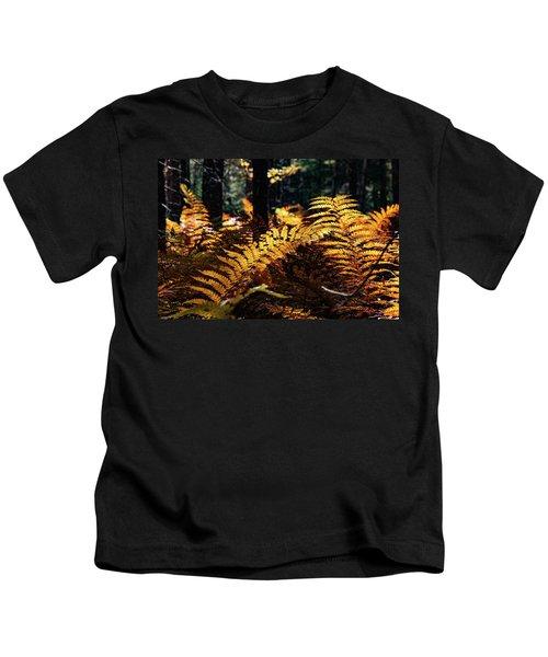 Maine Autumn Ferns Kids T-Shirt