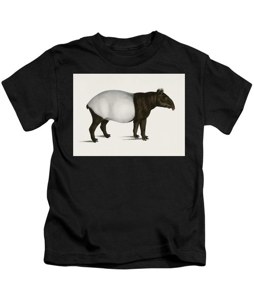 Malayan Tapir  Equus Montanus  Illustrated By Charles Dessalines D' Orbigny  1806-1876  Kids T-Shirt