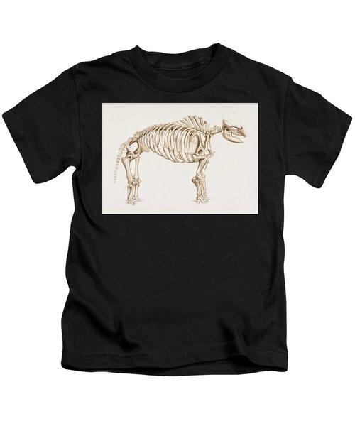 Mammoth  Mammut  Illustrated By Charles Dessalines D' Orbigny  1806-1876  Kids T-Shirt