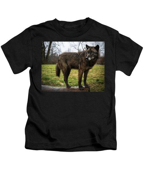 Niko Kids T-Shirt