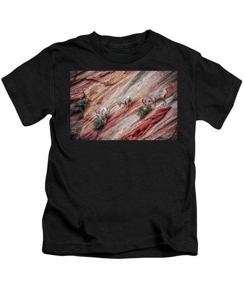 Nimble Mountain Goats 5694 Kids T-Shirt