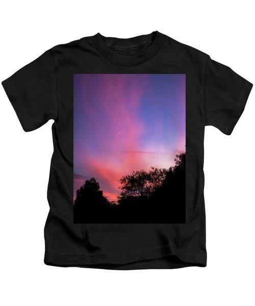 Pink Whisps Kids T-Shirt