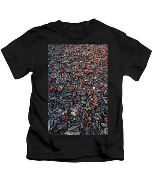 Red Flowers Over Stones Kids T-Shirt