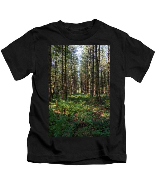 Tall Trees In Sherwood Forest Kids T-Shirt