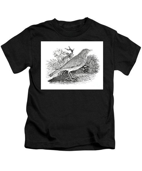 The Throstle Thrush  Kids T-Shirt
