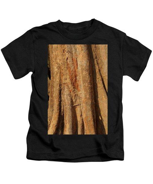 Tree Trunk And Bark Of Chambak Kids T-Shirt