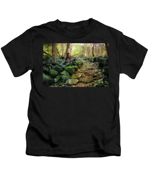 Waterfall Path Kids T-Shirt