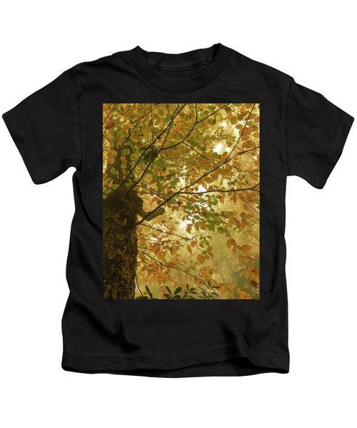 Yellow Fall Leaves - Blue Ridge Parkway Kids T-Shirt